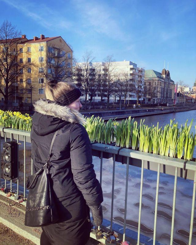 BYE maaliskuu ja tervetuloa kevät 🌱  Kevät on saapunut tänne Turkuun. Aurajoki on sulanut jäästä ja tipusten ooppera soi ympäri kaupunkia 🦆  Vaikka mulla loppuivat työt tässä kuussa, niin en ole jäänyt asiaa märehtimään - vaan olen ottanut kaikki irti kotoilusta. Olen kirjoittanut blogia enemmän kuin koskaan ja olen myös herättänyt lastenkirja-projektini taas henkiin 👊  Maaliskuu on ollut töiden loppumisesta huolimatta oikein ihana ja kyllä se kevät vaan herättää ruumiin ja mielen ihan uudella tavalla eloon talven jälkeen ☀  Diiskuneiti-blogista löytyy lisää maaliskuun kuulumisia ☀️
